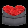 Boîte cœur avec 3 roses éternelles rouge - Autour d'Elle