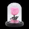 Rose éternelle rose sous cloche avec feuilles - Autour d'Elle