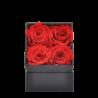Boîte carrée avec 4 roses éternelles rouge - Autour d'Elle